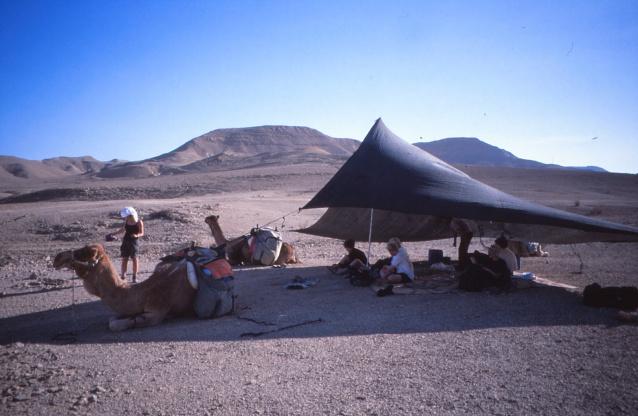 Negev 1999